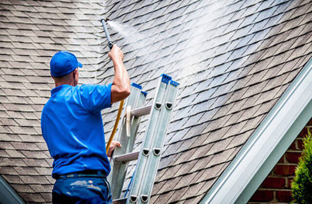 minneapolis roof cleaning
